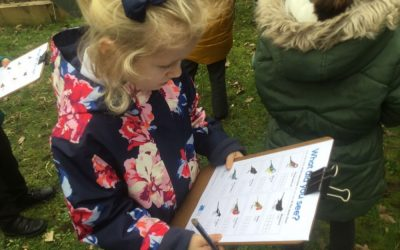 Big Schools Birdwatch