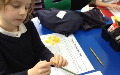 Dissecting Daffodils