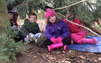 Windy Forest Schools